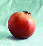Ripe red pomegranate Royalty Free Stock Photo
