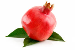 Ripe Red Pomegranate Fruit with Leaves Isolated Royalty Free Stock Photo