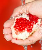Ripe red pomegranate in her hand in water.  royalty free stock photography