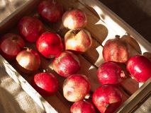 Ripe red pomegranates in a wooden box on brown burlap Stock Photo