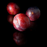 Ripe red and purple plum Royalty Free Stock Photo