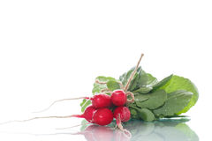 Ripe red radish with foliage. On a white background Stock Photography