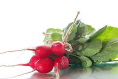 Ripe red radish with foliage. On a white background Royalty Free Stock Photo