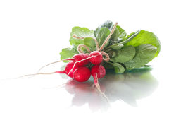 Ripe red radish with foliage. On a white background Stock Images