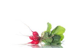 Ripe red radish with foliage. On a white background Royalty Free Stock Photography