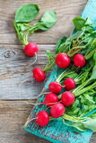 Ripe red radish with green leaves. Red radishes with green leaves on an old rustic background Royalty Free Stock Photos
