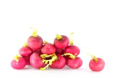 Ripe red radish Royalty Free Stock Images