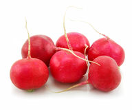 Ripe Red Radishes Isolated on White Royalty Free Stock Images