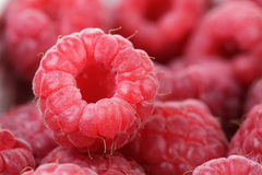 Ripe red raspberries background Royalty Free Stock Photography