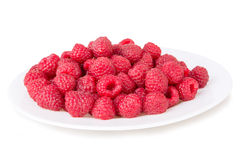Ripe red raspberries in a bowl Royalty Free Stock Image