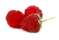 Ripe red raspberry Stock Image