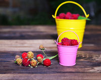 Ripe red raspberry in a bucket. And branch with fruits on a brown wooden background Royalty Free Stock Photo