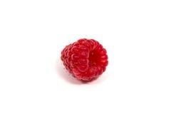 Ripe red raspberry Royalty Free Stock Photo