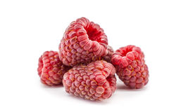 Ripe red raspberry isolated on white background. Ripe red raspberry fruit isolated on white background Stock Photography