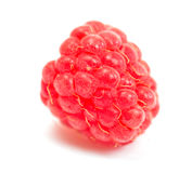 Ripe red raspberry isolated on white background. One ripe red raspberry isolated on white background Royalty Free Stock Photography