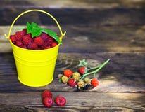 Ripe red raspberry in a yellow iron bucket Stock Photo