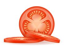 Ripe red sliced tomato stock vector illustration. Isolated on white background vector illustration
