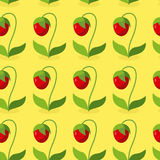 Ripe red strawberries with green leaves seamless pattern. Vector. Background of berries. Hilarious vintage ornament for fabrics Stock Photography