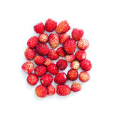 Ripe red strawberries on white background. Fresh afruits macro view Royalty Free Stock Photography