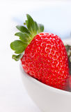 Ripe red strawberries in a white ceramic bowl on a white background Royalty Free Stock Image