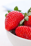 Ripe red strawberries in a white ceramic bowl on a white background Royalty Free Stock Photography