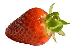 Ripe Red Strawberry. Ripened red strawberry isolated on white background Royalty Free Stock Images