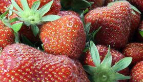 Ripe red Strawberry background Royalty Free Stock Images