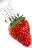 Ripe Red Strawberry On Fork Stock Photography