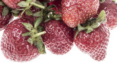 Ripe red strawberry fruits. Delicious red strawberries as a background royalty free stock images