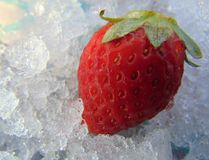Ripe red strawberry on ice. stock photography
