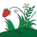 Ripe red strawberry Stock Photo