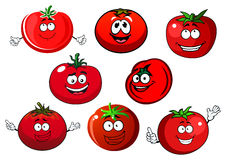 Ripe  red tomato vegetables Royalty Free Stock Image