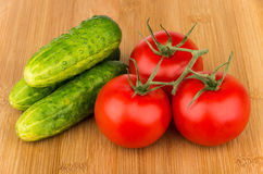 Ripe red tomatoes on branch and cucumber on board Royalty Free Stock Photo