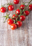 Ripe red tomatoes. Photo of fresh red tomatoes Royalty Free Stock Image