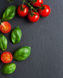 Ripe red tomatoes. Photo of fresh red tomatoes Royalty Free Stock Photos
