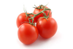 Ripe red tomatoes on the vine. Royalty Free Stock Photo