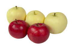 Ripe red and yellow apples isolated Stock Photos