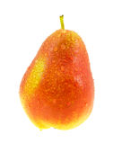 Ripe red and yellow pear with water drops. Stock Photos