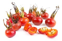 Ripe rosehips Stock Photography