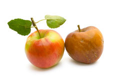 Ripe and rotten apple. On a white background Stock Image