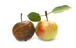 Ripe and rotten apple. On a white background Royalty Free Stock Images