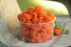 Ripe salmonberries on chair Stock Image