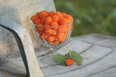 Ripe salmonberries on rustic chair Stock Photography