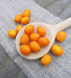 Ripe sea buckthorn in wooden spoon Royalty Free Stock Photo