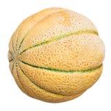 Ripe sicilian cantaloupe melon isolated Royalty Free Stock Photography