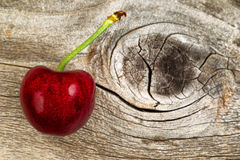 Ripe single black cherry aged wood Stock Images