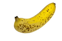 Ripe Single Yellow Banana with Spotted Peel Royalty Free Stock Image