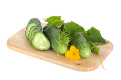 Ripe sliced cucumber on cutting board Stock Photography