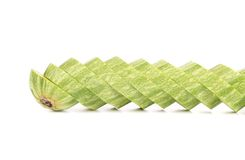 Ripe sliced marrow. Royalty Free Stock Images