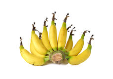 Ripe small Cavendish banana on white Stock Images
